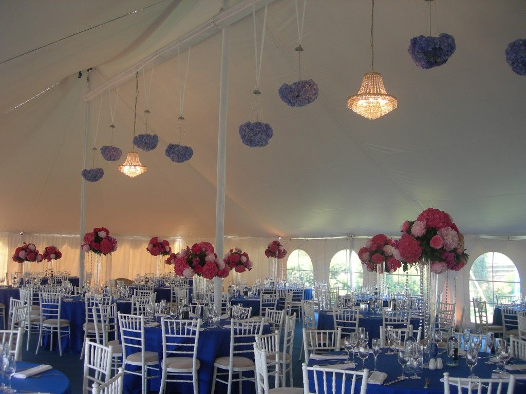 If you are planning a celebration party or event then why not sky marquees are the best marquee hire specialists in surrey we provide stunning marquees for various occasions choose from the selection of luxury junglespirit Choice Image