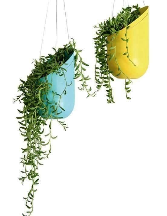 Recycled plastic bottle planter plastic bottle crafts for Plastic bottle planter craft