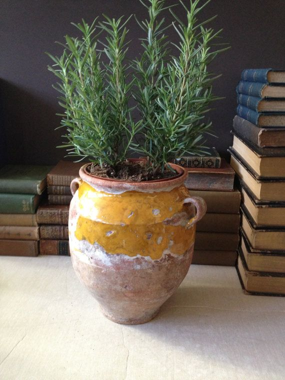 Antique 19th C French Confit Pot Yellow Ochre Glaze // Beautifully Aged on Etsy, $258.00