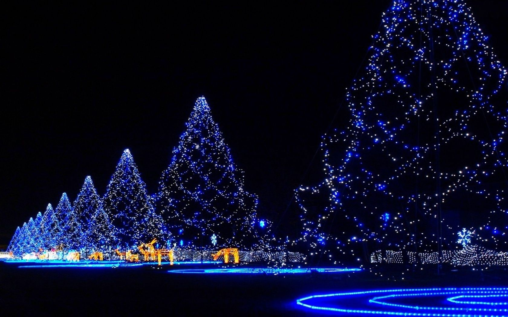 Christmas Wallpapper Google Search Blue Christmas Lights Christmas Tree Wallpaper Christmas Desktop Wallpaper