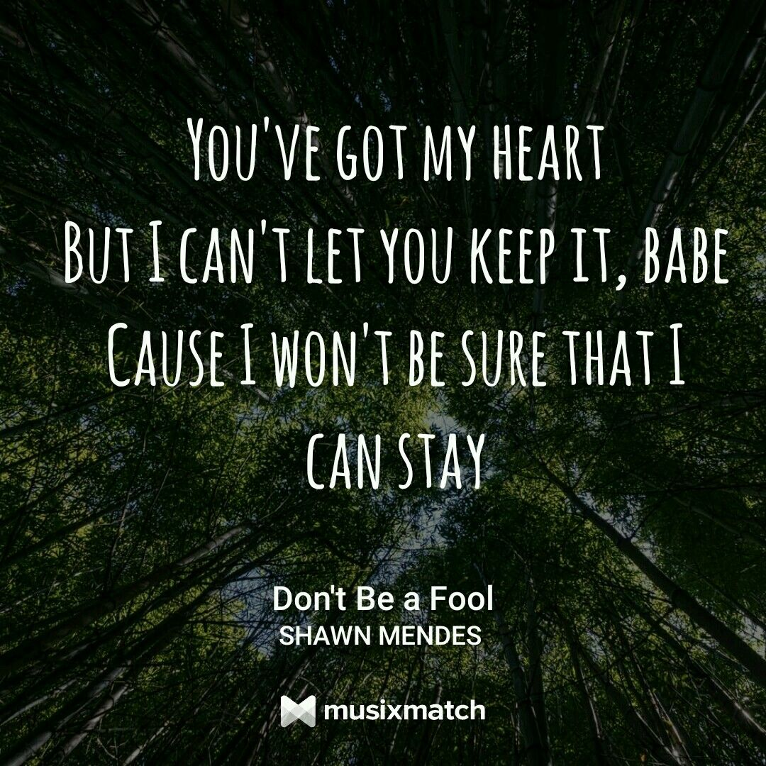 Pin By Emi On ℓуrιc Car ѕ Shawn Mendes Songs Shawn Mendes Lyrics Like This Shawn Mendes