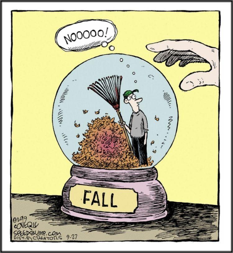 Pin By Interesting Things On Cartoon Art And Fun Headquarters Fall Humor Funny Cartoons Speed Bump Comic