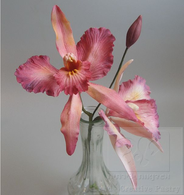 Sugar Cattleya Orchide Gum Paste Flowers Fondant Flower Tutorial Sugar Flowers