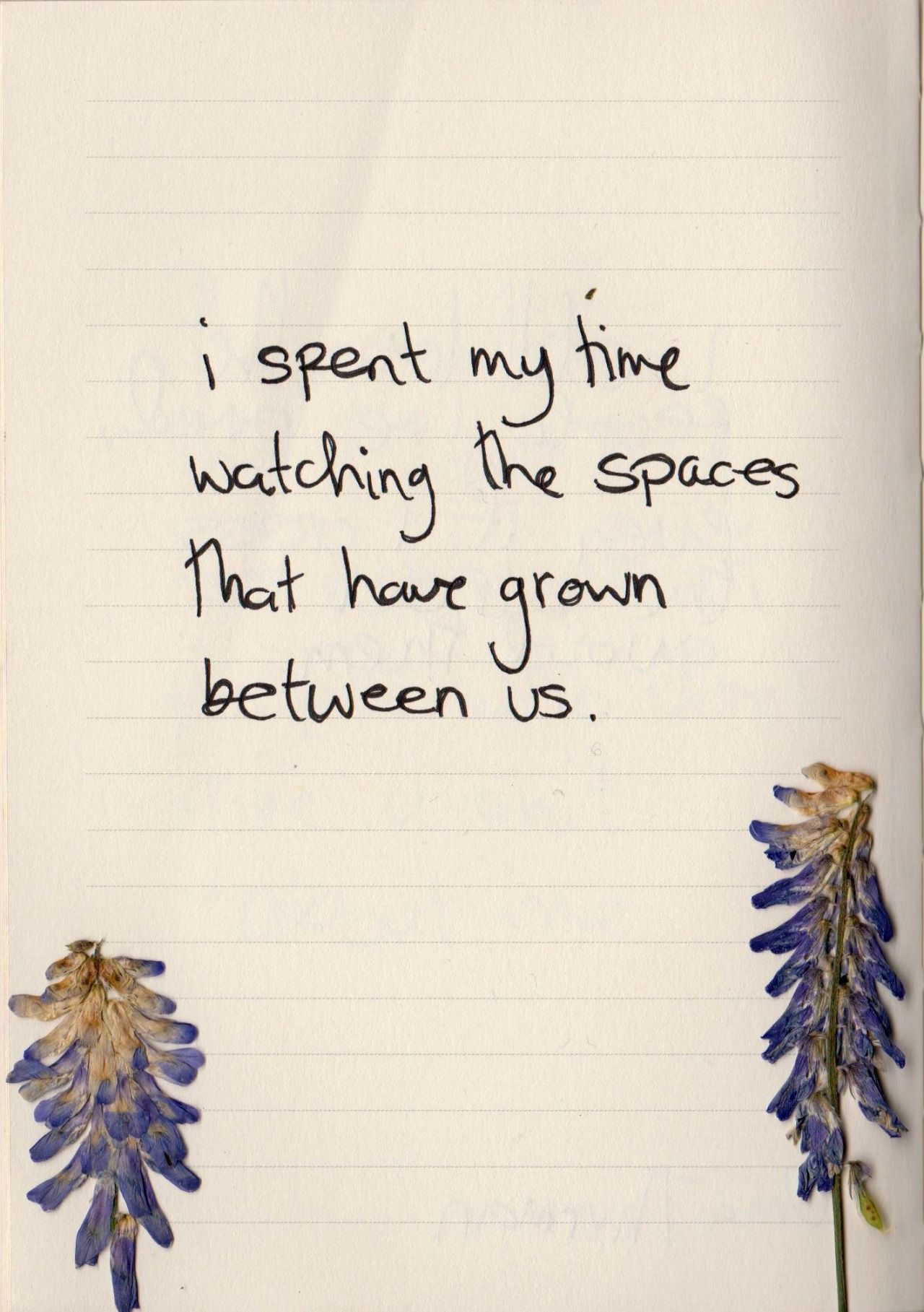 I Spent My Time Watching The Spaces That Have Grown Between Us