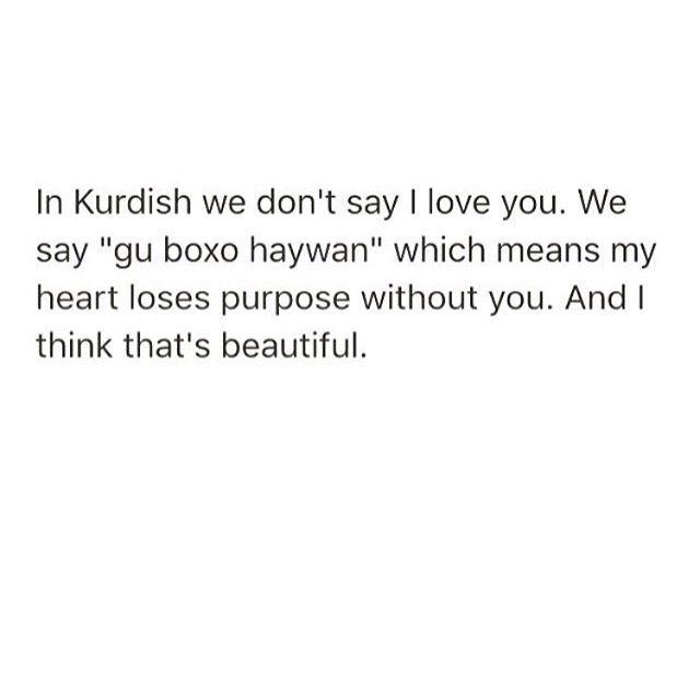 Kurdish Quotes D Kurdistan Poetry Quotes Cry Love