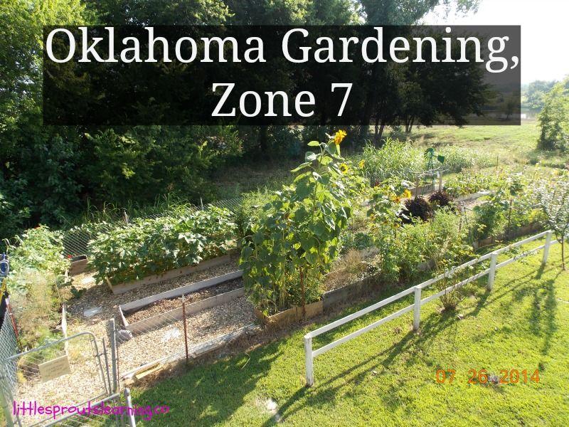 Gardening In Oklahoma Zone 7 Gardening Zones Easy Garden When