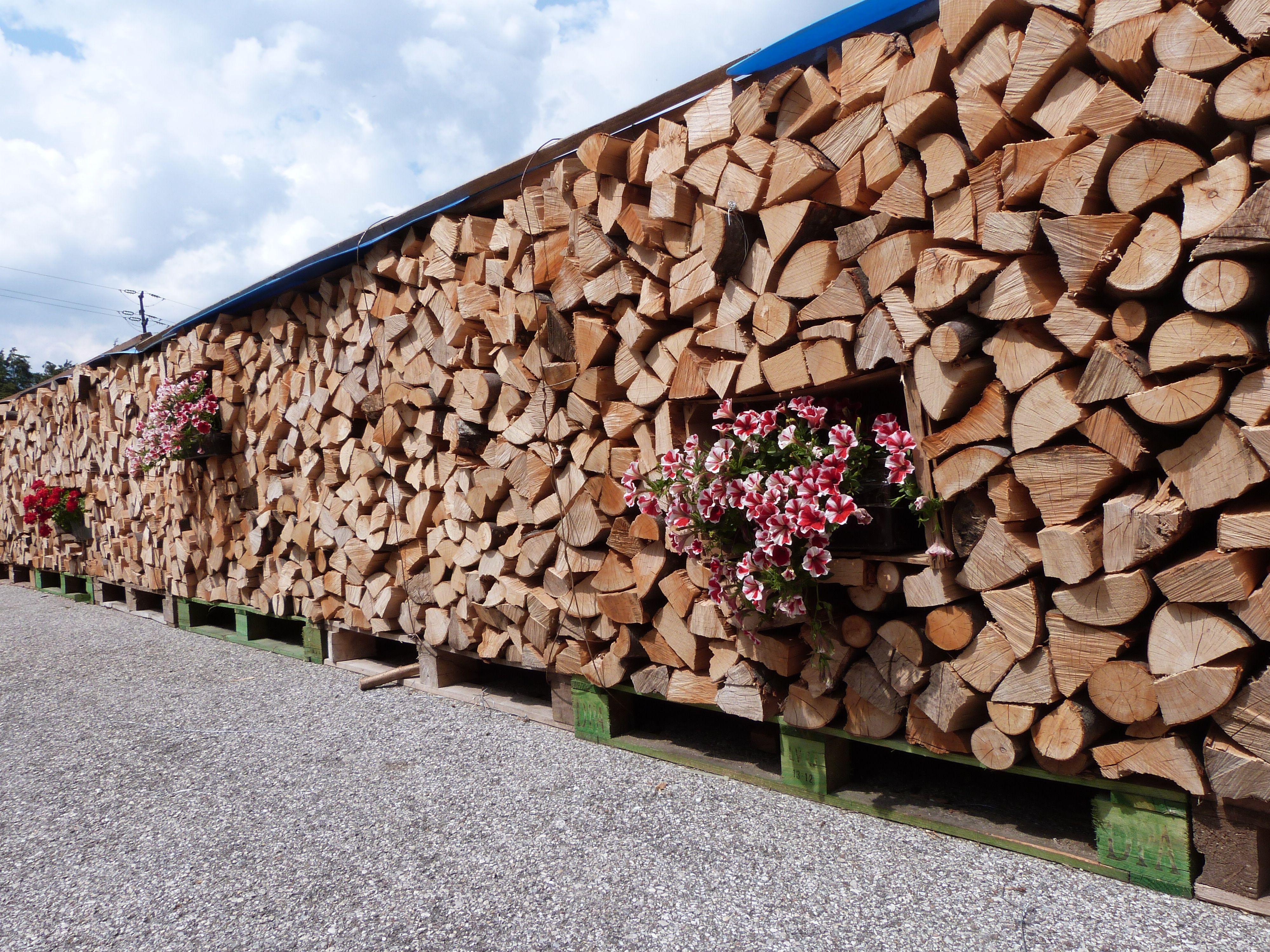 Trentino Alto Adige Artigianato ボード「l'arte della legnaia / the art of woodshed」のピン