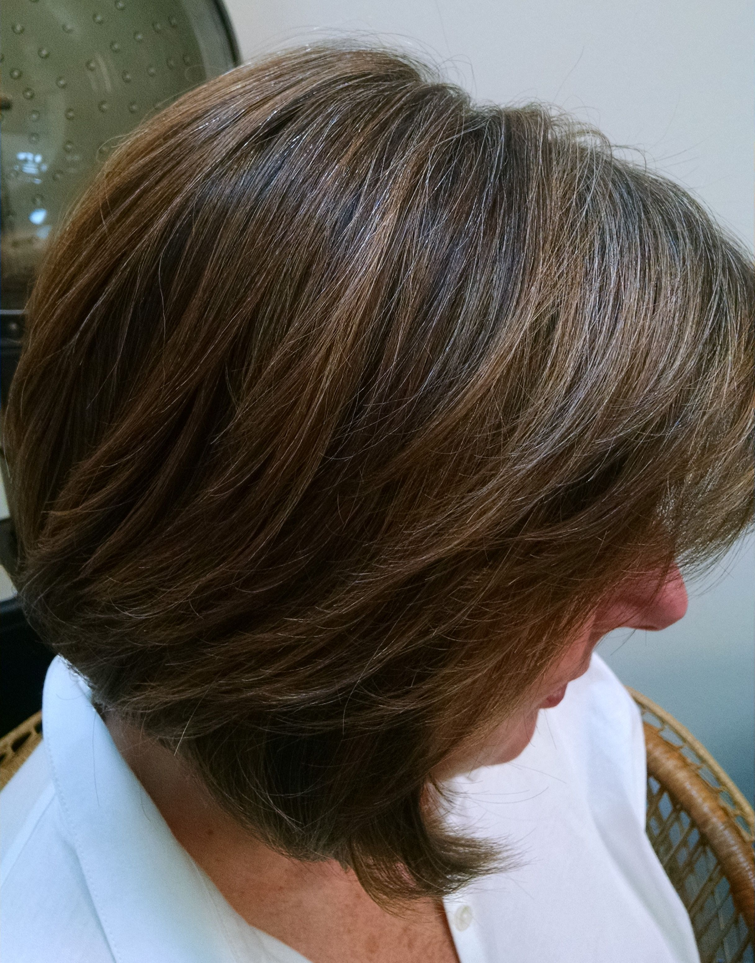 Blending Grey Hair With Highlights And Low Lights Google Search Beauty Favorites Pinterest