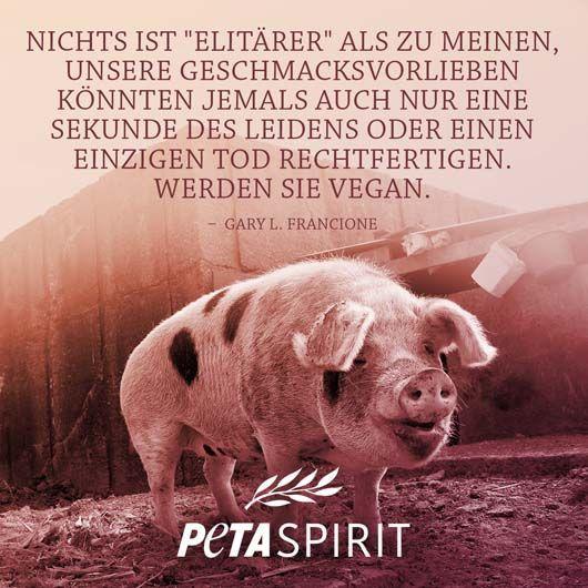Vegan Zitate