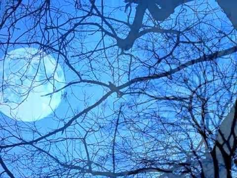 """Blue Moon Revisited"".wmv - Cowboy Junkies  -"