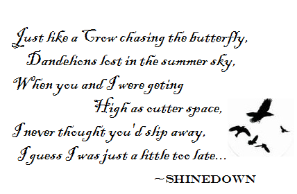 Shinedown - Crow & the Butterfly my shinedown tat will rep