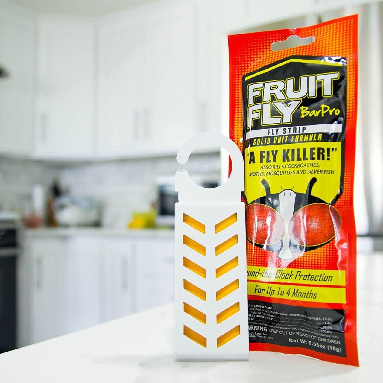 genius ways to kill fruit flies kill fruit flies pinterest