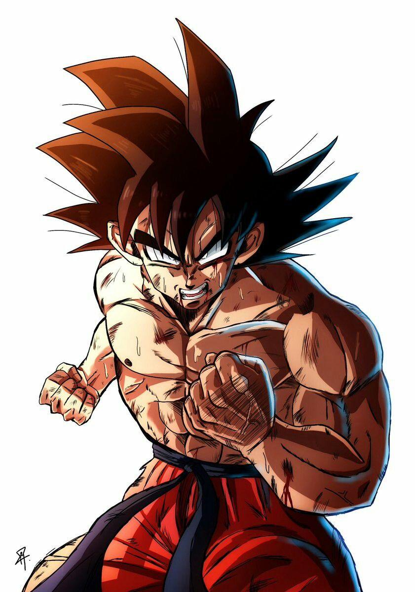 Pin De Aashir En Dragon Ball Personajes De Goku Personajes De Dragon Ball Dibujo De Goku