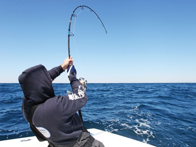 How to Choose the Best Saltwater Fishing Rods Salt Water