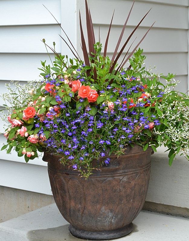 Grand Island Gardeners Develop Landscape At New Build Buffalo Niagaragardening Com Impatiens Flowers Double Impatiens Container Flowers