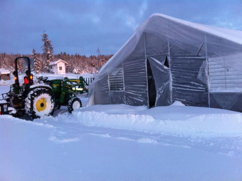 shaulane shadley shared this picture of their rimol greenhouse after 30 inches of snow in - Rimol Greenhouse Of Photos