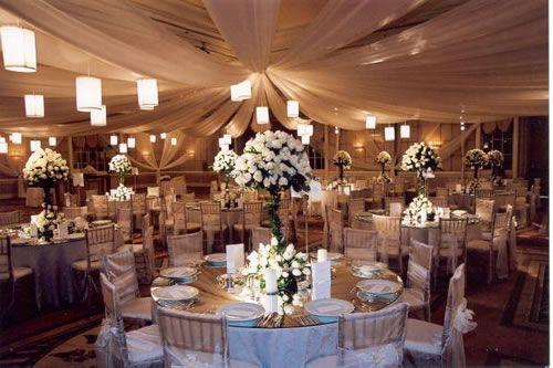 Wedding reception ceiling decoration ideas tulle ceiling canopy wedding reception ceiling decoration ideas tulle ceiling canopy wedding day decors junglespirit Image collections