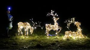 Image Result For Images Of Christmas Lights Christmas I Love It Best Christmas Light Displays Best Christmas Lights Christmas Light Displays