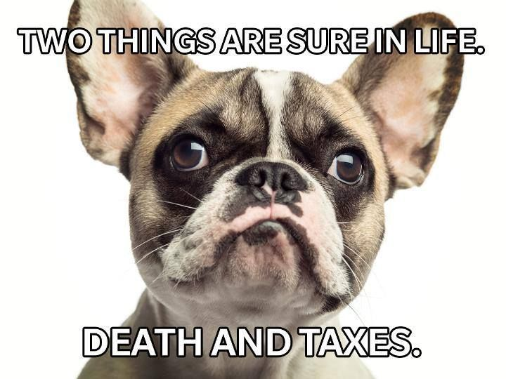Lucky For You Life Insurance Can Help With Both Wipe That Frown Off Your Face And Head To My Office 816 380 7550 Posted 3 16 Social Media Post Lol Animals
