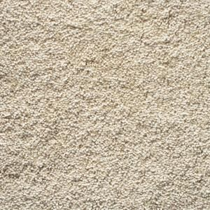 12 Ft X 15 Ft Beige Unbound Carpet Remnant R1215h The Home Depot Carpet Remnants Rugs On Carpet Buying Carpet
