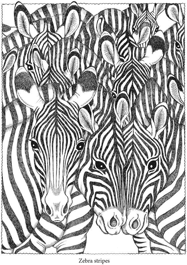animaux | Color it | Adult coloring pages, Dover coloring ...