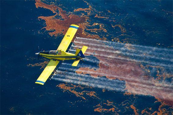 Deepwater Horizon BP Gulf Oil Spill Impact