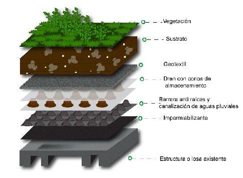 Mejora El Medio Ambiente Azoteas Verdes Techos Verdes