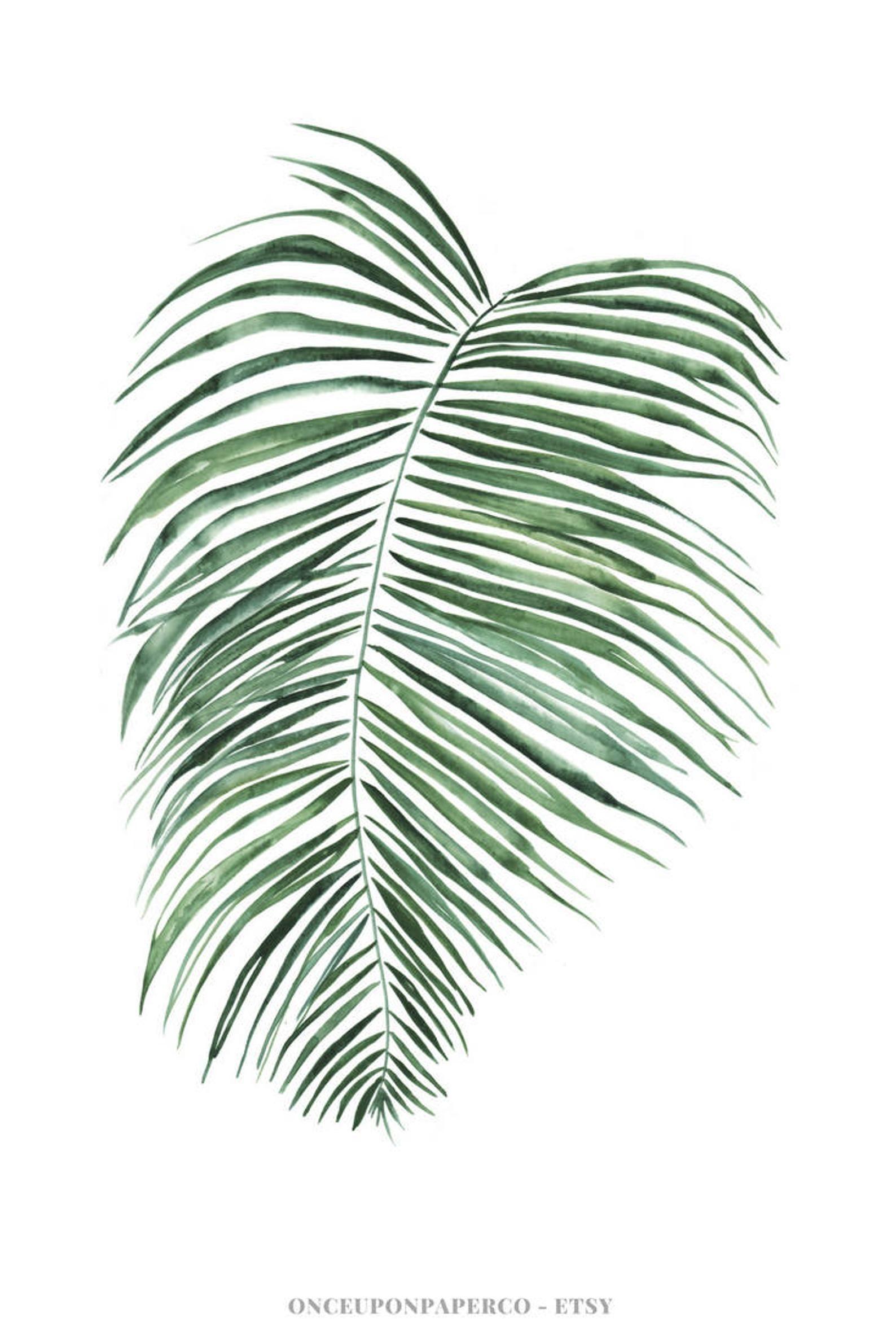 Botanical Fern Leaf Print Fern Print Fern Leaves Printable