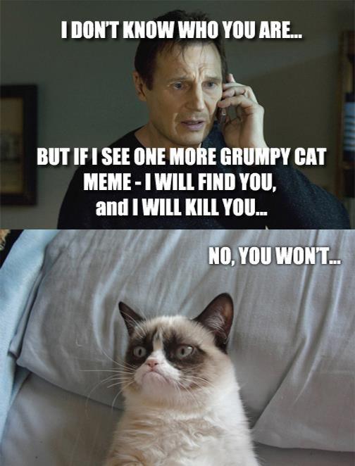 He'll find you, Grumpy Cat.