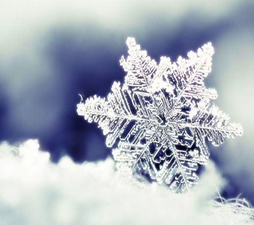 This is a perfect snowflake. In a idealistic world all snowflake would be perfect like this one. SweetDreamsx