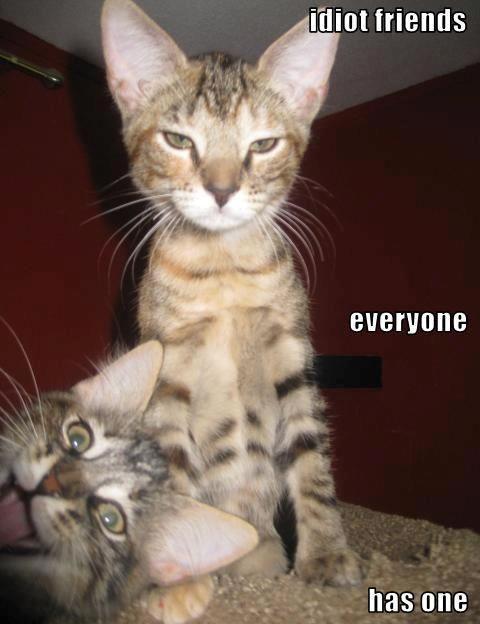 Everyone Has One