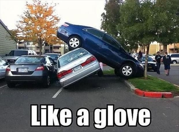 Funny Pictures Of The Day 65 Pics Funny Pictures Bad Parking Bones Funny