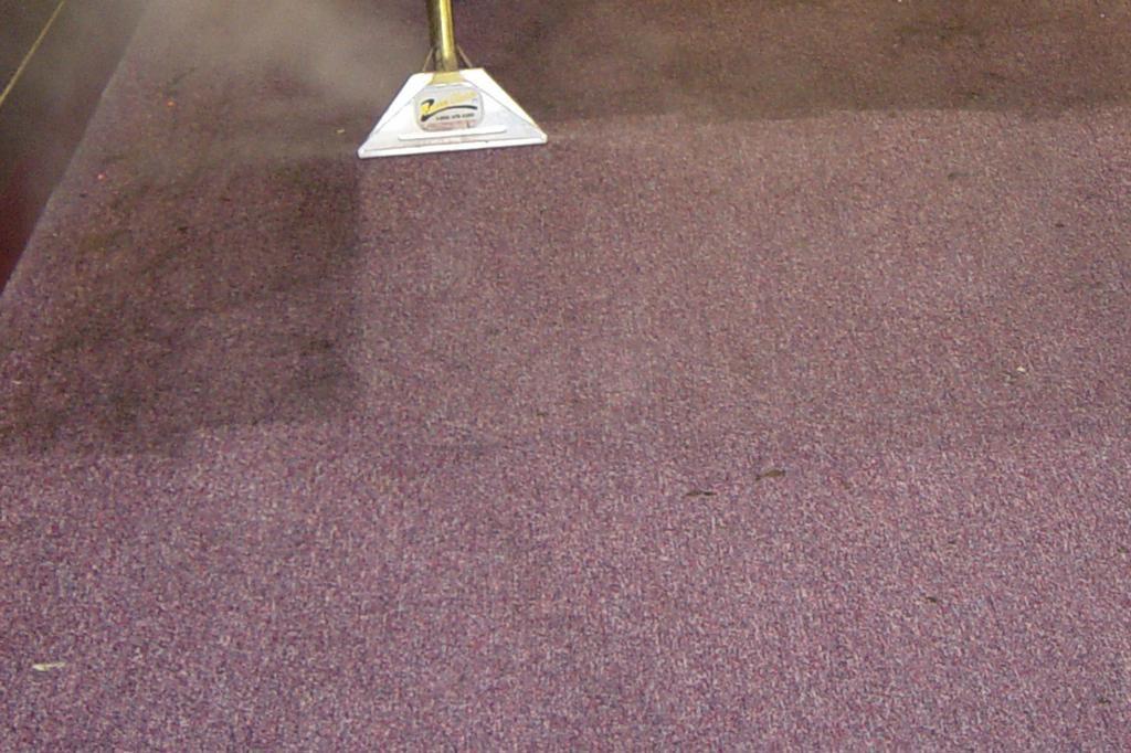 Steam Clean Carpet Cost Floor Matttroy