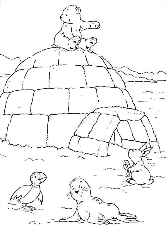 Kleurplaten Kleine Dieren.Print Kleine Ijsbeer Op Iglo Kleurplaat Winter Winter Kids