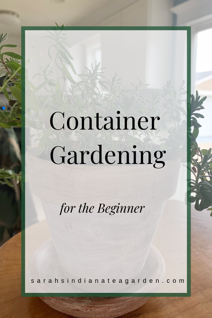 Container Gardening: The Step-by-Step Guide -