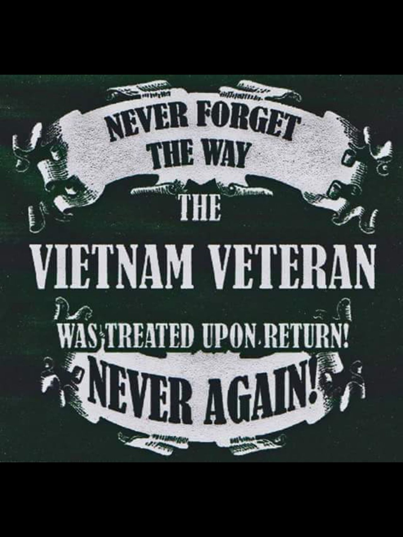 Never forget the way the vietnam veteran was treated upon return never again