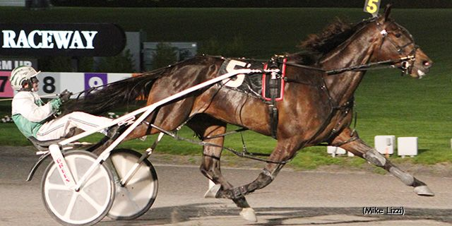Harness Racing's Luckiest Horses - #8   Standardbred Canada   Farm