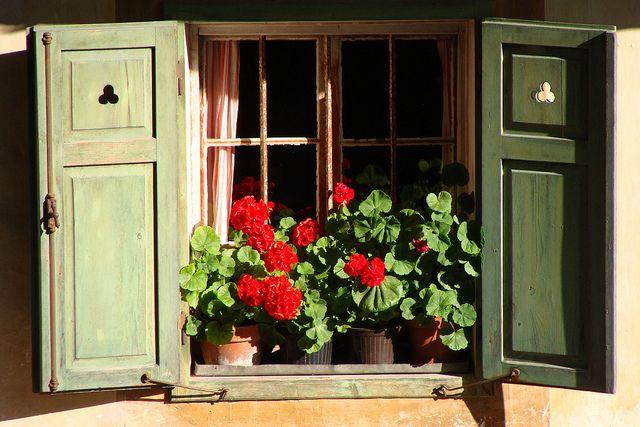 finestre Tirolesi - Cerca con Google