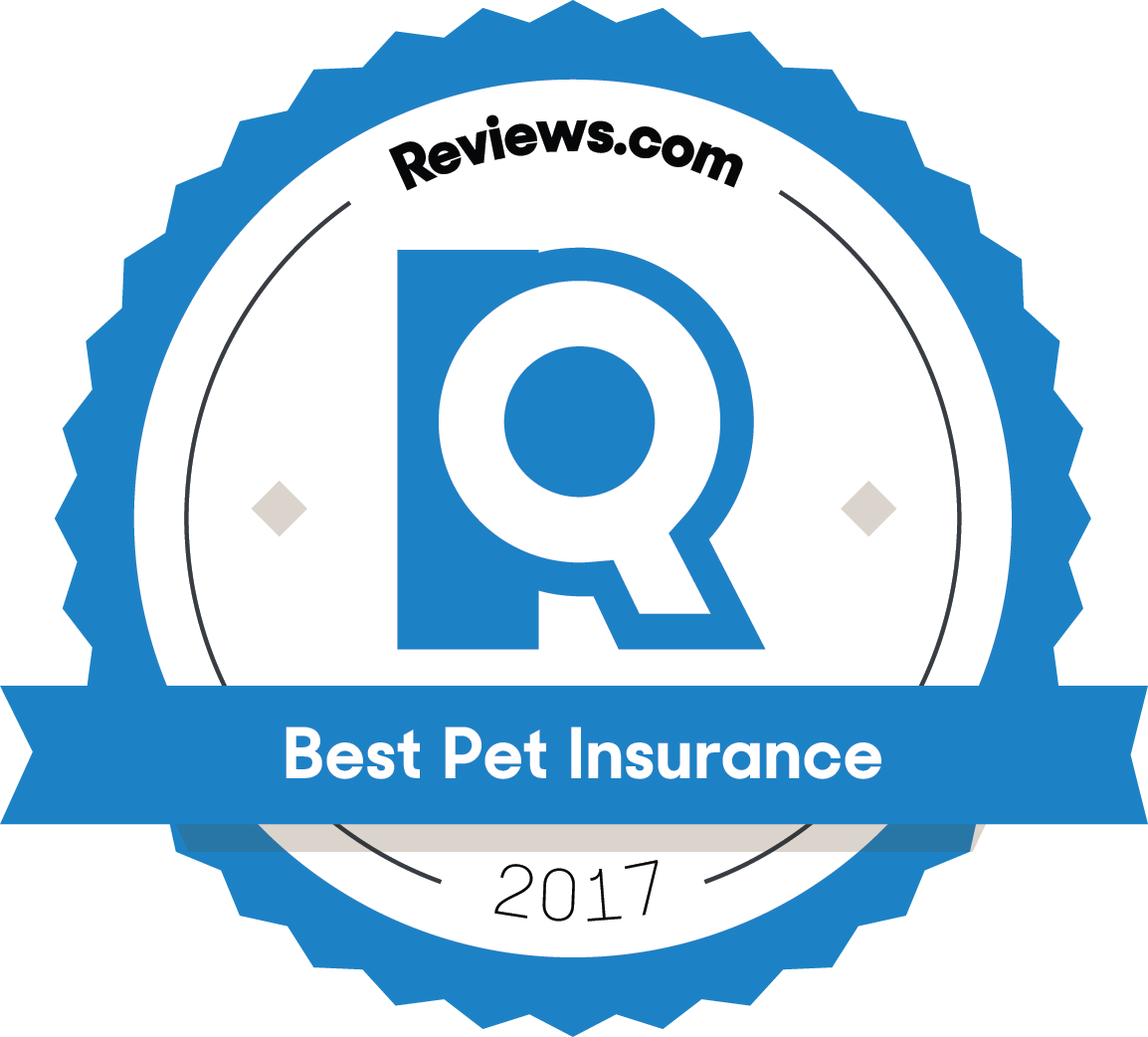 The Best Pet Insurance Best Pet Insurance Home Security Systems Pet Insurance