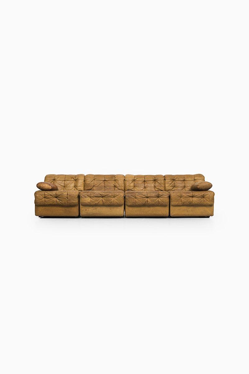 Fleas On Leather Sofa