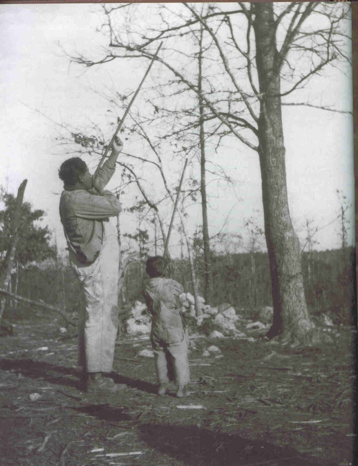 Cherokee hunting with blow guns.