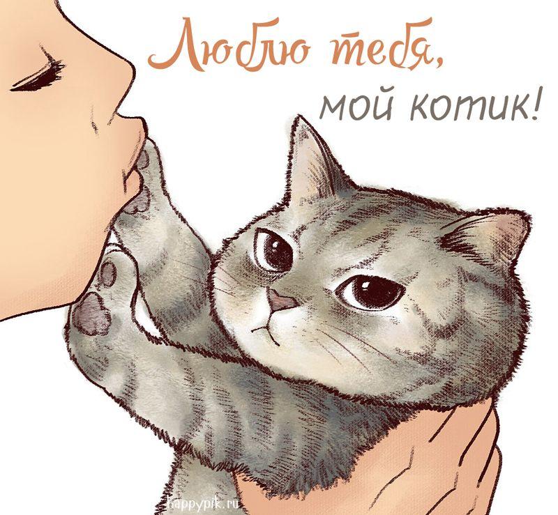 Картинка, картинки с надписью котик мой