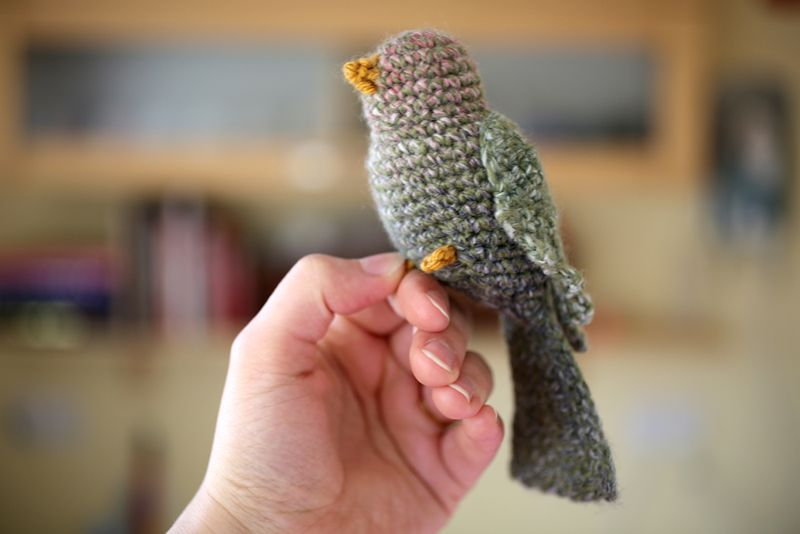 Crochet Bird Amigurumi Free Patterns • DIY How To | 534x800