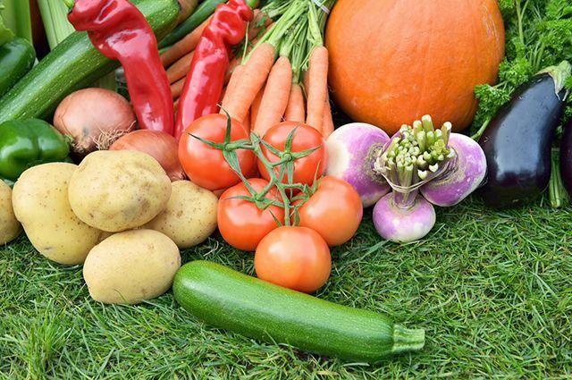 Каждый современный человек осведомлен о пользе овощей, но с их многовековой удивительной историей знакомы далеко не все…