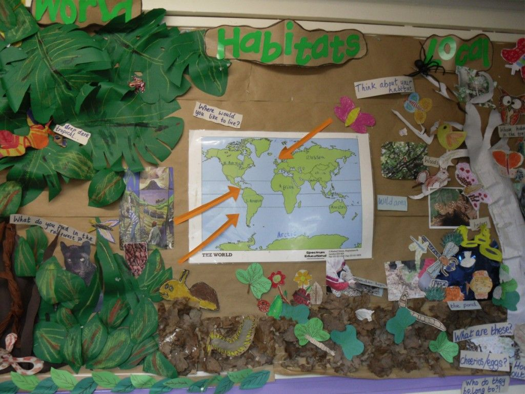 Habitats Teaching Photos