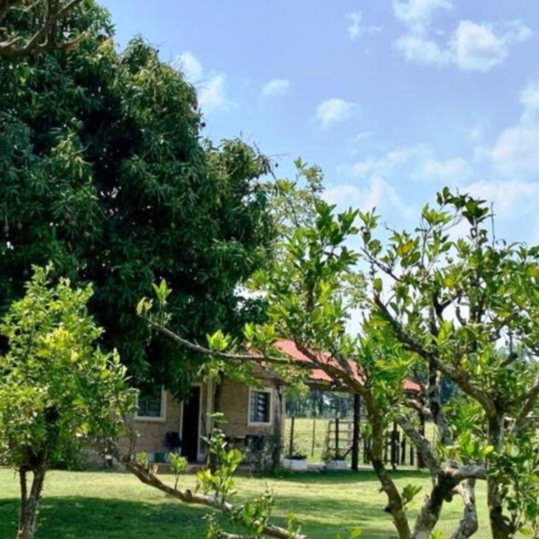 Paraguay Farm Estancia 42 Ha Mit Haus Und Pool In Paraguari Zu Verkaufen 329 000 Euro Paraguay Paraguari Paraguari Estancia E Estancia House Styles Haus
