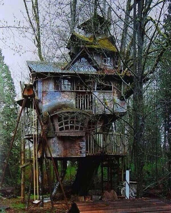 70 espectaculares lugares y cosas abandonadas El arbol, Abandonado - casas en arboles