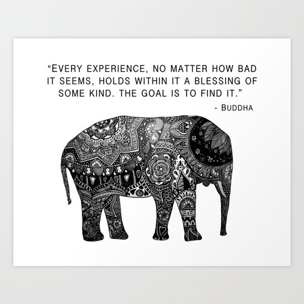 Every experience, no matter how bad it seems, holds within it a blessing of  some kind. The goal is to find it. Buddha | Buddha quote, Words, Quotes to  live by