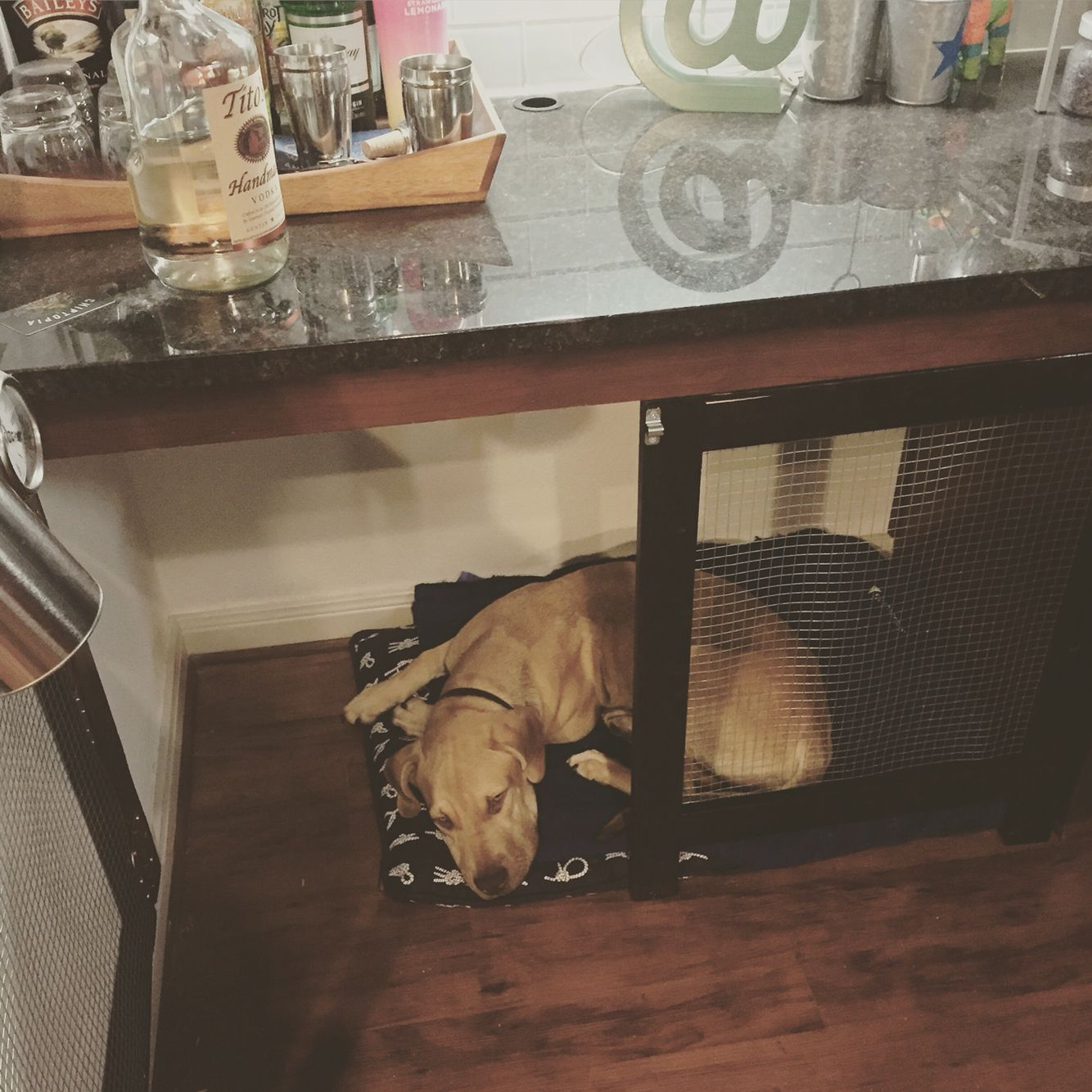Diy Project Converted A Built In Desk Into A Dog Crate Cost About 60 Forgive The Color Mismatch Used The Stain I H Diy Dog Crate Dog Crate Diy Dog Stuff