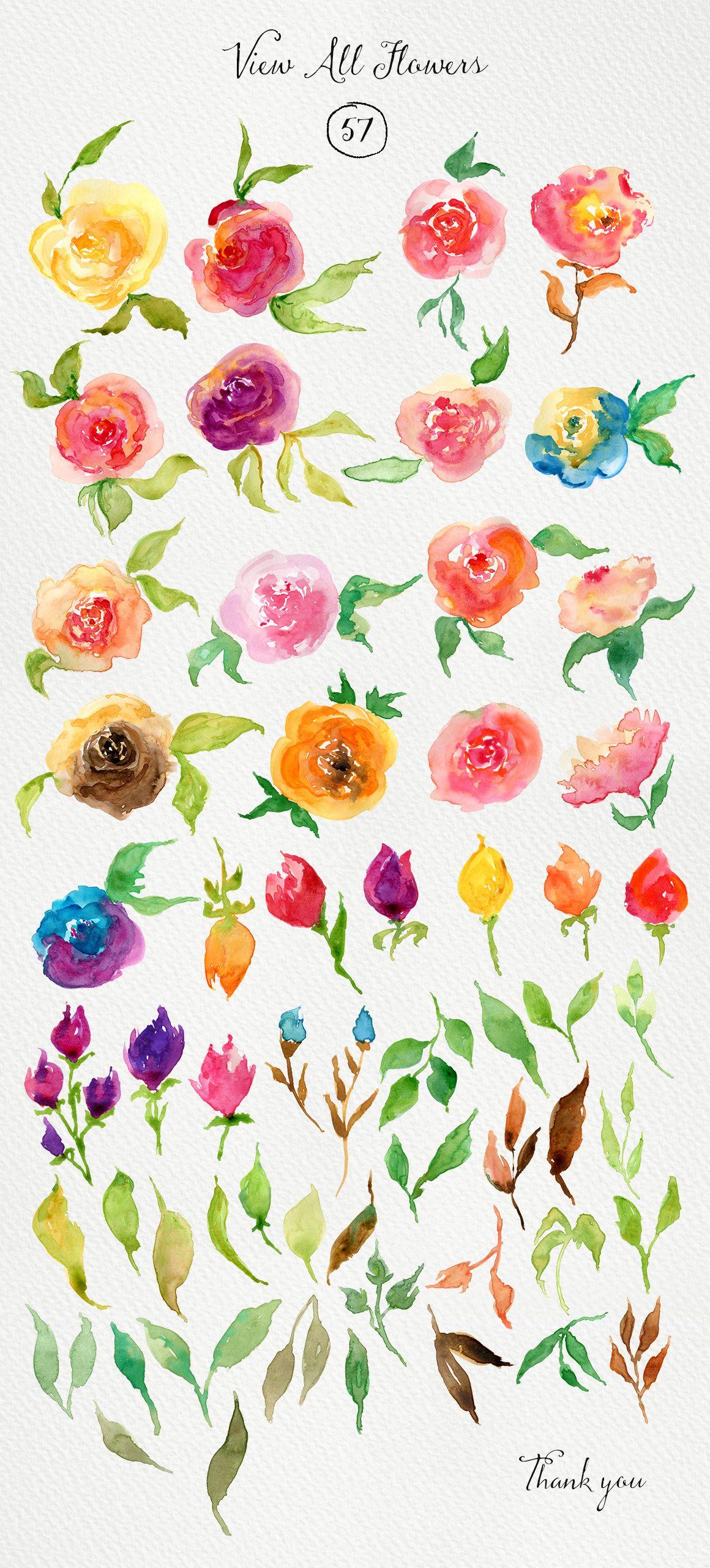 Color art floral wonders - Watercolor Roses Diy By Webvilla On Creative Market